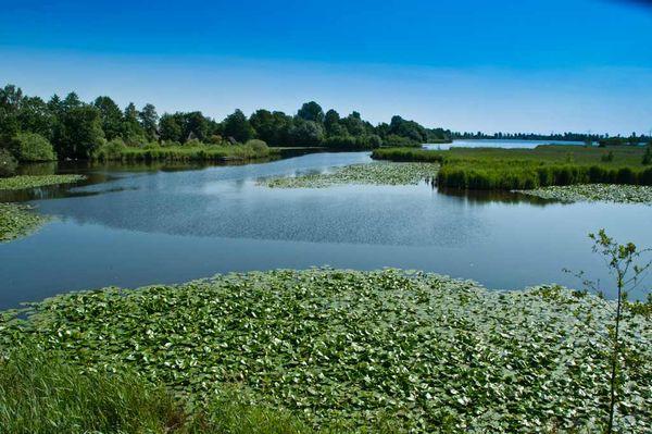 Biotope wie das Sandwater in der Ortschaft Simonswolde laden zu Vogelbeobachtungen und idyllischen Erinnerungsfotos ein