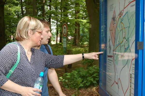 wandern Wald Ihler Forst